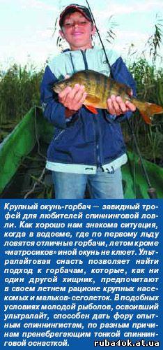 ловля окуня